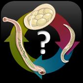 Parasitology Quiz Questions 🔬 3.7.7z