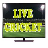 Live Cricket Matches 1.0