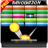 Bricks Demolition Star King 1.0.0