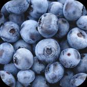 Blueberry 1.0
