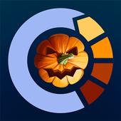 Circle The Pumpkin