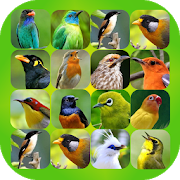 Bird Sound Plus 2.0.2