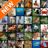 Animal Wallpapers HD 20.0.0