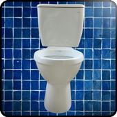 Toilet 1.0