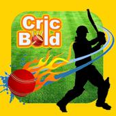 Cricket Live Line - CricBold 3.6