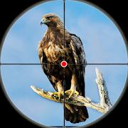 Desert Birds Sniper Shooter - Bird Hunting 2018 3.0