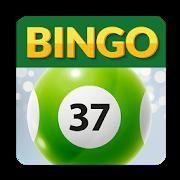 Bingo37 2018-10-3-13_28_39