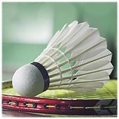 Badminton Sport 1.2