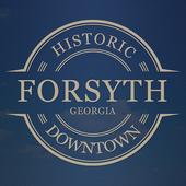 Historic Downtown Forsyth GA 1.2