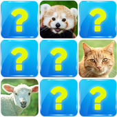 Memory Game: Animals 6.5