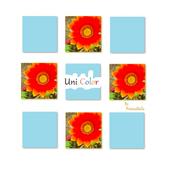 UniColor 1.0