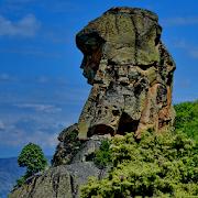 Momata Rock Trails 1.0