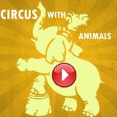Circus Show Animals Videos
