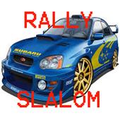 Rally Slalom 1.0