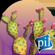 PI VR Wildlife Wonders 1.0