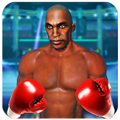 Punch Boxing Ring Fighter-Fit for Fighting 1.0
