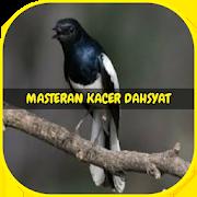Masteran Kacer Dahsyat Offline 1.5