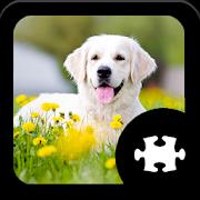 Dog Jigsaw Puzzle 1.6.0
