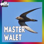 Master Suara Panggil Walet Terbaik 1.0