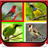 Suara Burung Lengkap Full Offline 2.0