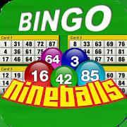 Nine Balls Video Bingo 2.06