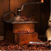 커피놀이방 1.1.4