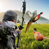 Pheasant Hunting: Archery Birds Hunter 2018 1.04