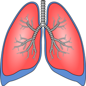 Respiratory system surgeries 1.0.1