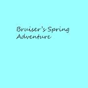 Bruiser's Spring AdventureReflux LabsAdventure