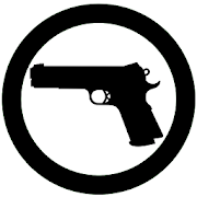 Concealed Carry Weapon Laws 3.0