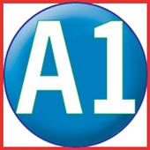 A1VOIP SIP-1 3.6.7