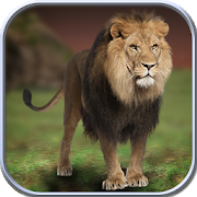 Wild Lion Simulator 2016 1.0