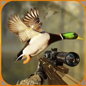 Birds Jungle Sniper Hunting 1.0