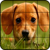 Puzzle Dogs 4.0