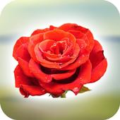 Rose Dialer 1.5.3