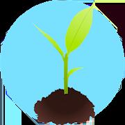 curso de jardineria huerto en casa 1.5