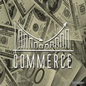 CBSE Commerce-12th 1.1