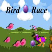 Bird Egg Race 1.0