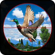 Real Archery Birds hunter Jungle Bird Shooting 19 1.1