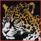 CHEETY: African Cheetah Run 1.4