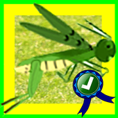 Hungry Grasshopper Jumping 1.1