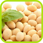 Soybean Cultivation 1.0