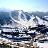 com.sergeby.zimnieolimpiiskieigry icon