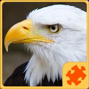 Birds PuzzleShakshuka DesignBoard