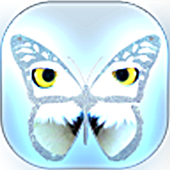 Guess Butterfly Puzzle 1.0