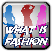 What is Fashion 1.1