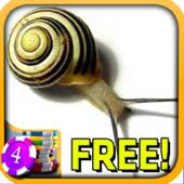 3D Snail Slots - Free 1.5