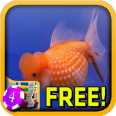 Goldfish Slots - Free 1.5