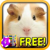3D Hamster Slots - Free 1.5