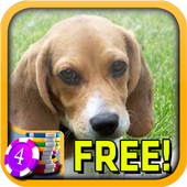 3D Beagle Slots - FreeSignal to Noise AppsCasino